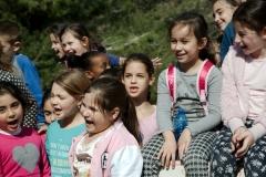 Elementary school (1)